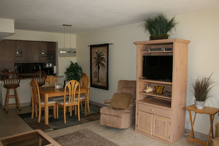 furnished beige dining room and TV with DVD player